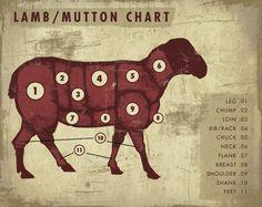 Lamb and Mutton Chart - Art Print by Cupcake Mountain Kosher Recipes, Lamb Recipes, Real Food Recipes, Chorizo, A Well Traveled Woman, Chuck Wagon, Artisan Food, Home Economics, Livestock