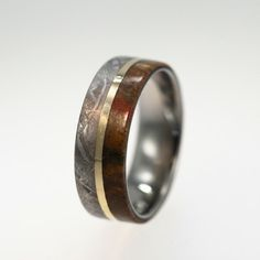 This is a ring made from dinosaur bone, meteorite, and gold.