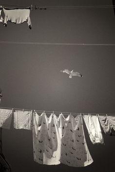 © Blanka Mateno | 2OI4 | Laundry day in Venice