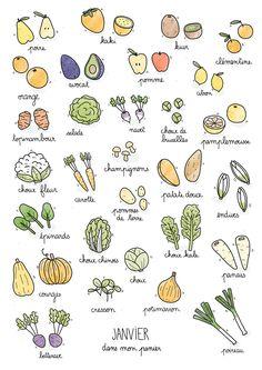 Fruits & légumes de saison – Janvier
