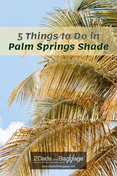 5 Things to Do in Palm Springs Shade - 2 Dads with Baggage Best Vacation Destinations, Best Vacation Spots, Best Places To Travel, Best Vacations, Vacation Trips, Travel With Kids, Family Travel, Life Inspiration, Travel Inspiration
