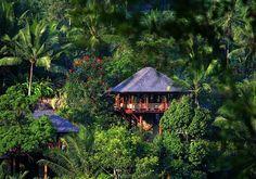 Bali again!