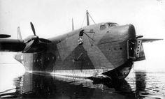 Blohm & Voss BV-238