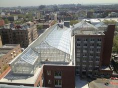 US (NY): Sky Vegetables officialy open 8,000 sqf commercial rooftop greenhouse