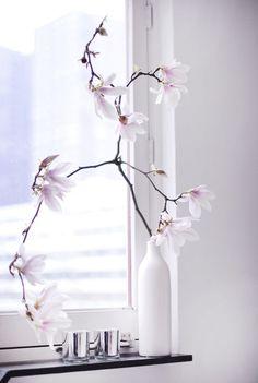 Im fashionstoned: fresh fresh Love Flowers, Dried Flowers, White Flowers, Painted Flowers, Tall Vase Decor, Vases Decor, Blossom Flower, Spring Home, Ikebana