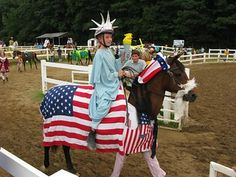 Horse Costumes, Summit County, County Fair, Show Horses, Fancy Dress, Halloween, Whimsical Dress, Costume, Chic Dress