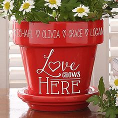 Buy Love Grows Here Personalized Flower Pots you can customize with your own text. Add names custom engraved on the flower pot above the Love grows Here design. Types Of Flowers, Love Flowers, Diy Flowers, Beautiful Flowers, Flower Pot Crafts, Clay Pot Crafts, Flower Pot Art, Painted Flower Pots, Painted Pots