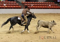 You can't find a more sentimental win than Mike Major's with Black Hope Stik in the open versatility ranch horse. Learn more: http://aqha.com/Showing/Versatility-Ranch-Horse/Coverage/03032012-Open-Versatility-Ranch-Horse.aspx