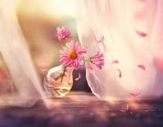 Breath of the wind by Ashraful Arefin - Photo 173124181 / 500px