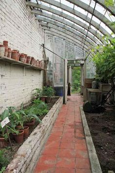 lean-to greenhouse attached to the garage wall....