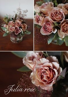 Julia's rose is a stunning old world rose!
