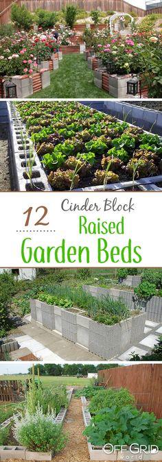 12 Cinder block raised garden beds. Beautiful raised garden ideas!