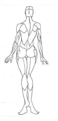 Anatomy_008 by Sled-Storm on deviantART