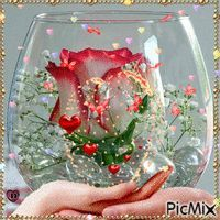 Most popular Picmix [p. 3 on - Most popular Picmix [p. 3 on - Beautiful Flowers Wallpapers, Beautiful Rose Flowers, Beautiful Flower Arrangements, Amazing Flowers, Rose Flower Wallpaper, Flowers Gif, Beautiful Love Pictures, Beautiful Gif, Happy Birthday Wishes Cards