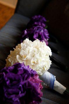 brides bouquet: white hydrangea, orchids & lisianthus
