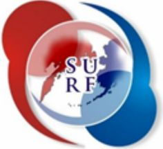 The Stanford US - Russia Forum (SURF) is Lawyr.it's new partner!