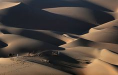 Liwa desert, United Arab Emirates. Men lead their camels across the dunes in the Liwa desert in the United Arab Emirates, 250km west of Abu Dhabi, during the Liwa Moreeb dune festival, which celebrates the folklore of the region ( 04012017 )