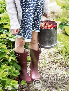 Dívka v holinkách s kyblíkem jahod. Girl with strawberries in buckets Hunter Boots, Rubber Rain Boots, Riding Boots, Cool Pictures, Strawberry, Celebrity, Buckets, Fresh Fruit, Image