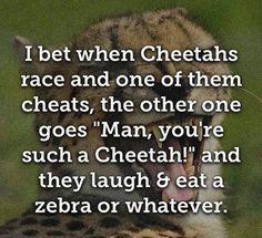 Hahahahahahaha-snort-