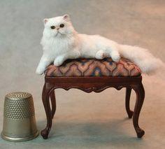 Needle felted cat...