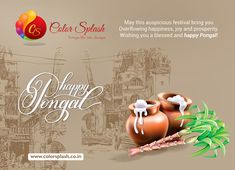 "May this festival brings you everlasting peace and joy. May you get the gifts of good health and prosperity.""Happy Pongal    www.colorsplash.co.in"