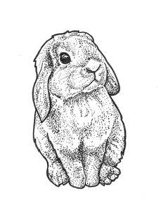 Dotwork bunny illustration, fineliner