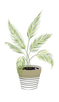 17 New Ideas Plants Illustration Architecture Art And Illustration, Floral Illustrations, Watercolor Illustration, Watercolor Art, Plant Painting, Plant Drawing, Plant Art, Cactus Painting, Cactus Art