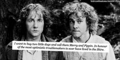 lotrconfessions:  I want to buy two little dogs and call them Merry and Pippin. In honour of the most optimistic troublemakers to ever have lived in the Shire.