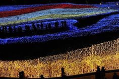 Nabana no Sato (なばなの里) winter illumination in Japan. One of the best light shows in all of Japan. Nabana No Sato, Dream Pictures, Cool Pictures, Cool Photos, Winter Light Festival, Light Tunnel, World Festival, Shadow Silhouette, Holiday Pictures