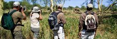 Private Safaris - Walking Private Safari, East Africa, Amazing Destinations, Small Groups, Walking, Travel, Viajes, Walks, Destinations