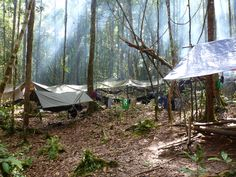 Whilst working for Raleigh International in Borneo I worked as a volunteer expedition medic looking after groups of around 12 people. This is the hammock village that we carried with us whilst trekking through the jungle.  #greatwalker