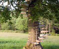 Turn a backyard tree into the perfect hangout spot using the tree trunk spiral staircase. This railed staircase wraps around the trunk without damaging the tree, making it a safe to climb and eco-friendly way to ascend to your treehouse.