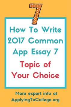 Common App Optional Essay   College Application Essays