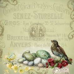 Beautiful Printable Vintage Images | Astrid's Artistic Efforts