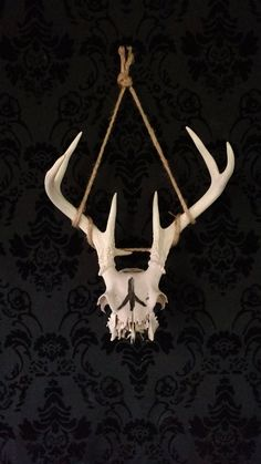 Check out this item in my Etsy shop https://www.etsy.com/listing/612276445/death-rune-skull-cap-w-antlers