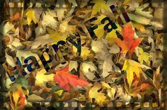 #HappyFall #leaves #Fall #nature