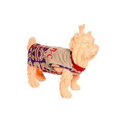Camiseta Verão Bichinho Chic - MeuAmigoPet.com.br #petshop #cachorro #cão #meuamigopet
