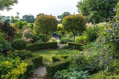 Valley Road Garden in July