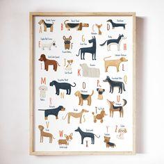 Printable ABC dogs breeds dogs Alphabet for a Dog lover Dog Alphabet Print, Animal Alphabet, Alphabet Wall, Border Collie, Dog Nursery, Nursery Ideas, Nursery Decor, Dog Bedroom, Nursery Room