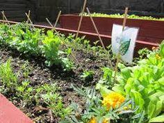 Kuvahaun tulos haulle puutarhatyöt