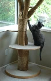 Cat tree made out of a real tree Source Related posts: Cat furniture, cat scratcher, cat toy , cat. Perro Labrador Retriever, Diy Cat Tower, Cat Activity, Tree Furniture, Luxury Furniture, Cat Perch, Cat Towers, Cat Playground, Cat Room