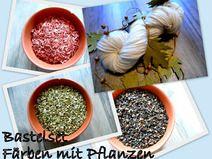Set Pullovergarn mit Pflanzen färben
