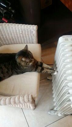 Catching some heat
