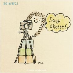 Hérisson, caméra illustrator | Nami Nishikawa
