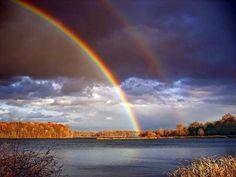 Amazing Nature Shots   Photo Center