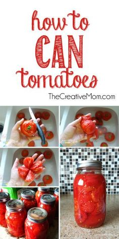 Ways to preserve your gardens food all year! #cantomato