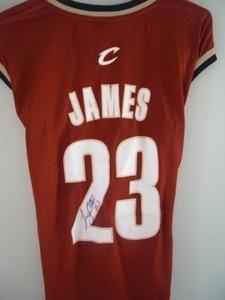 Lebron James Autographed Cleveland Cavaliers Basketball Jersey | crazycollectors.com