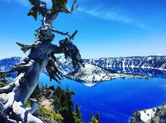 So blue #craterlake #craterlakenationalpark #travel #wanderlust #explore #adventure #outside #nature #roadschool #findyourpark #rvlife #fulltimerv #oregon by yumfam http://bit.ly/AdventureAustralia