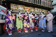 Maiko in beautiful kimono