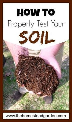 How to Properly Test Your Soil #gardensoiltesting